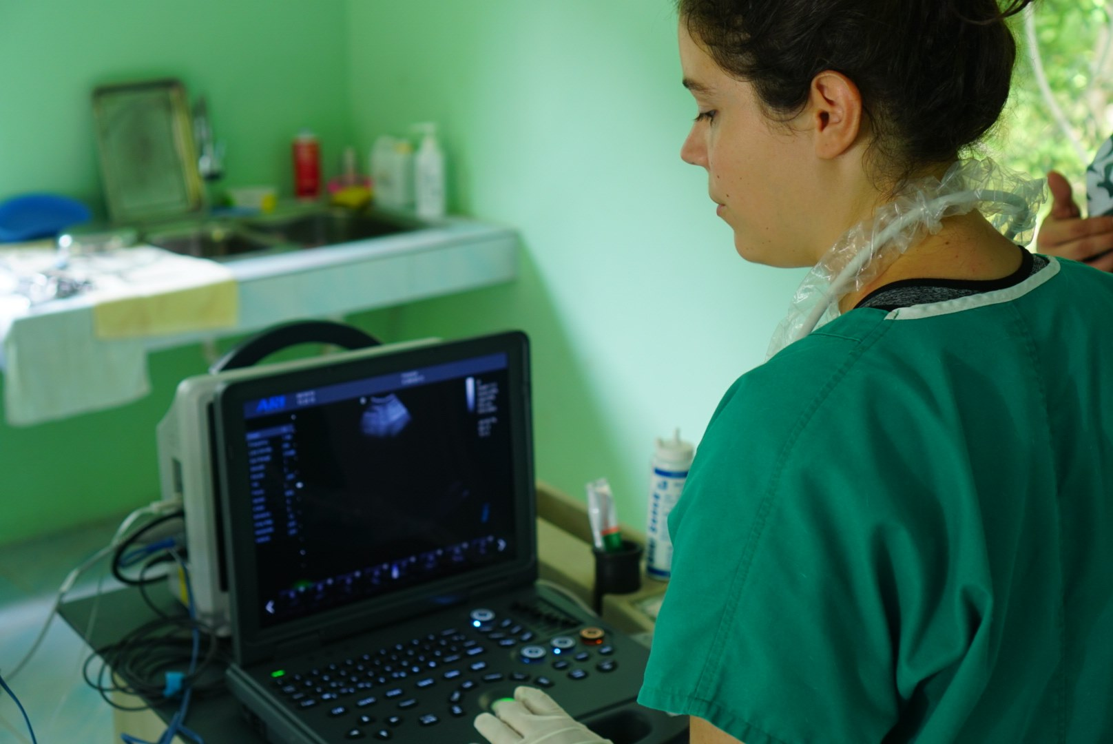 Vets carrying out an ultrasound with donated equipment