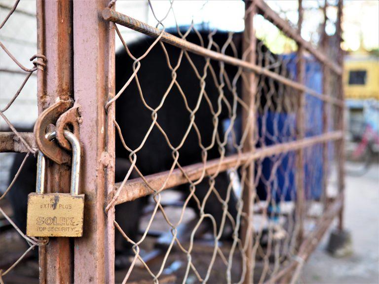 Enclosure used to rescue animals
